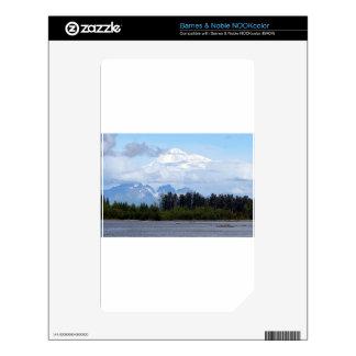 Denali, Mt McKinley, from river, Alaska, USA 1 Skins For NOOK Color