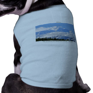 Denali / Mtns are calling-J Muir/with border Tee