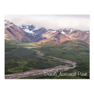 Denali National Park - Alaska | Postcard