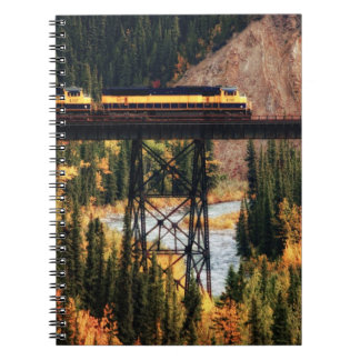 Denali National Park and Preserve USA Alaska Notebook