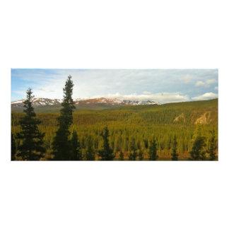 Denali National Park in Alaska bookmarks Rack Card