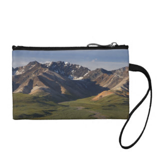 Denali National Park Landscape Change Purse