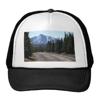 Denali national park landscape trucker hat