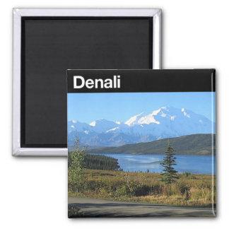 Denali National Park Magnet