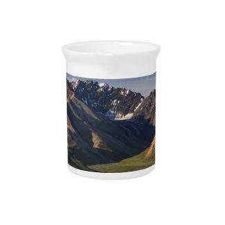 Denali National Park Pitcher