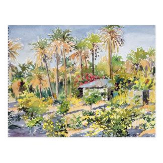 Denbo's House 1997 Postcard