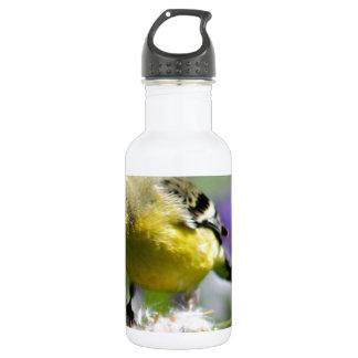Dendelion Feast Stainless Steel Water Bottle