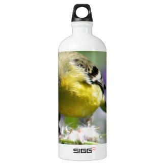 Dendelion Feast Water Bottle
