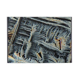 Dendritic crystals under the microscope cover for iPad mini