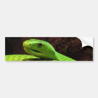 Dendroaspis del este Angusticeps de la mamba verde Pegatina Para Auto