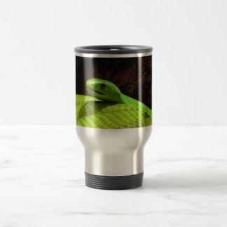 Dendroaspis del este Angusticeps de la mamba verde Taza De Café
