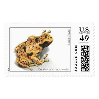 """Dendrobates leucomelas"" Stamp"