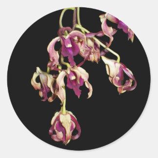 Dendrobium púrpura pegatina redonda