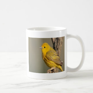 Dendroica petechia bird peace and joy mugs