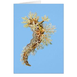 Dendronotus Card