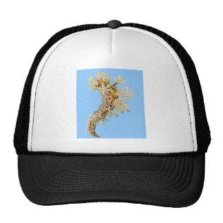 Dendronotus Gorras