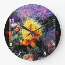 Dendrophyllia arbuscula large clock