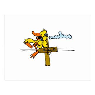 Denial Duck Postcard