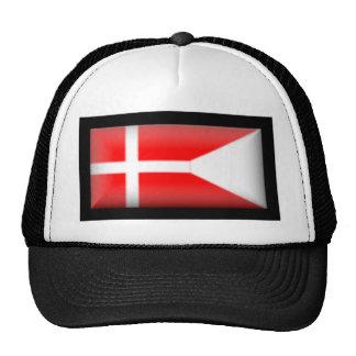 Denmark-Split Flag Mesh Hat