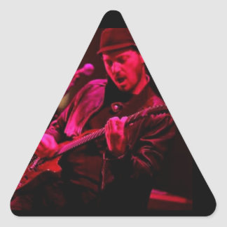 Denny DeMarchi Music Merchandise Triangle Sticker