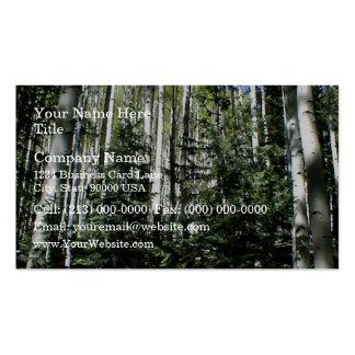 Dense forest of aspen trees business card