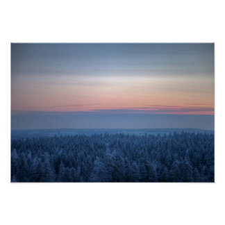 Dense forest on a cold winter evening poster