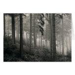 Dense Forest Photo Design Greeting Card