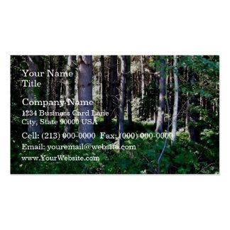 Dense woodland scenes business card