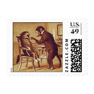 DENTAL CLINIC, DENTIST MONKEY AND CAT POSTAGE