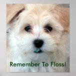 Dental Hygiene Floss Puppy Poster