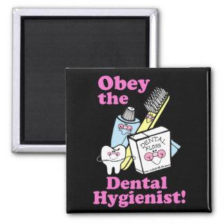 Dental Hygienist Magnet