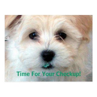 Dental reminder card puppy