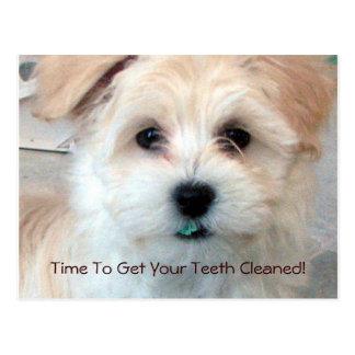 Dental Reminder Postcard