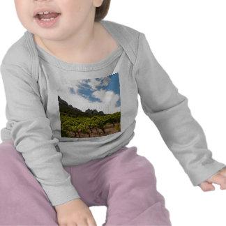 Dentelles de Montmirail Camiseta