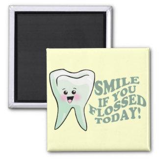 Dentist Dental Hygienist Orthodontist Periodontist Magnet