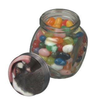 DENTIST RAT GLASS CANDY JAR