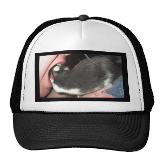 DENTIST RAT HAT