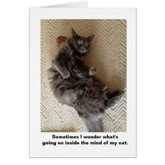Dentro de la mente de gatos tarjeta de felicitación