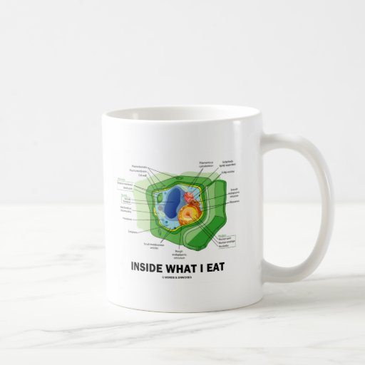 Dentro de lo que yo como (el humor vegetariano de taza clásica