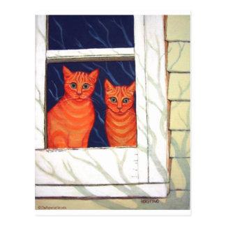 Dentro de mirar hacia fuera - gatos de Tabby Tarjetas Postales