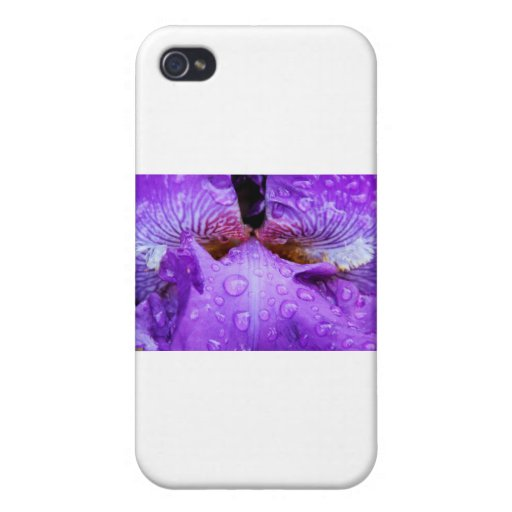 Dentro del iris púrpura con dropplets del agua iPhone 4/4S fundas