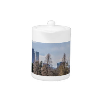denver city skyline in colorado teapot