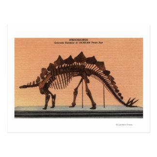 Denver, Colorado - museo de la historia natural 2 Tarjetas Postales