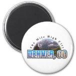 Denver Colorado Refrigerator Magnets