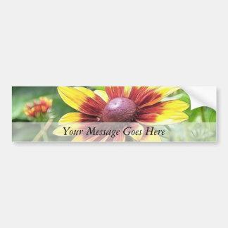 Denver Daisy - Rudbeckia Bumper Sticker