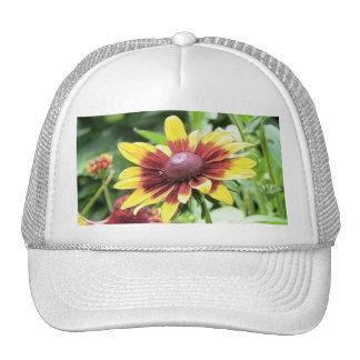 Denver Daisy - Rudbeckia Trucker Hat