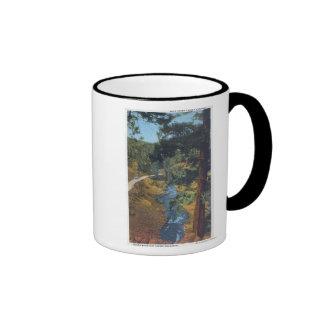 Denver Mountain Park, CO - Bear Creek Canyon Mug