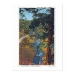 Denver Mountain Park, CO - Bear Creek Canyon Postcard