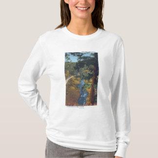 Denver Mountain Park, CO - Bear Creek Canyon T-Shirt
