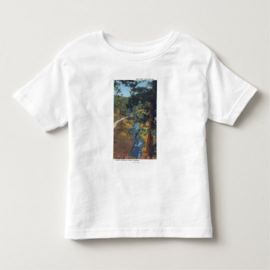 Denver Mountain Park, CO - Bear Creek Canyon Toddler T-shirt
